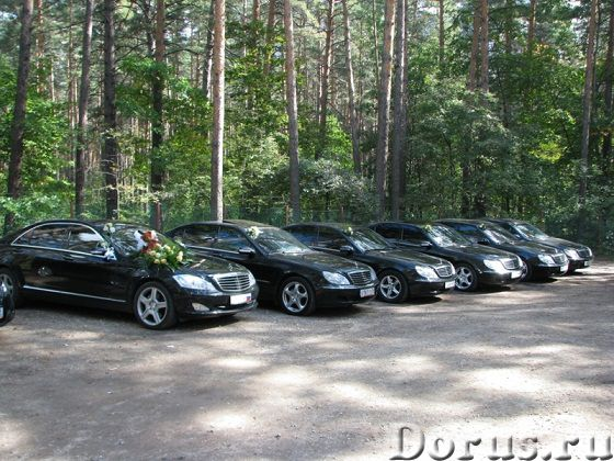 Автомобили, лимузины для свадьбы - Прокат автомобилей - Легковые автомобили Ауди, БМВ, Мерседесы, То..., фото 10